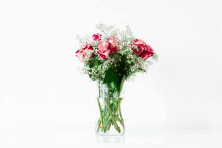 Roses Really Smell Like…Friendship