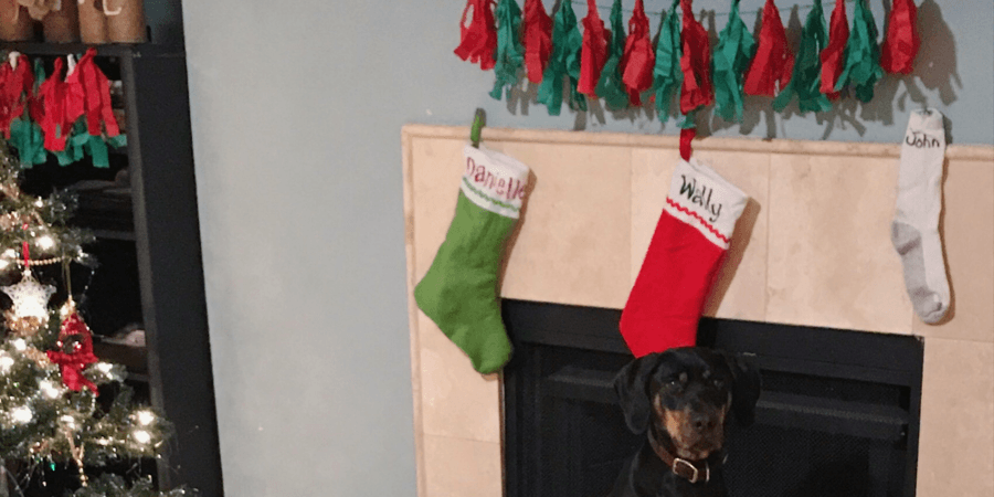 decorating for Christmas on a budget